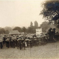Recruiting meeting in Regent's Park for Lord Kitchener's new British Army in the summer of 1914. | City of Westminster Archive Centre