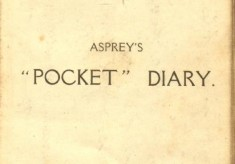 World War One Diary